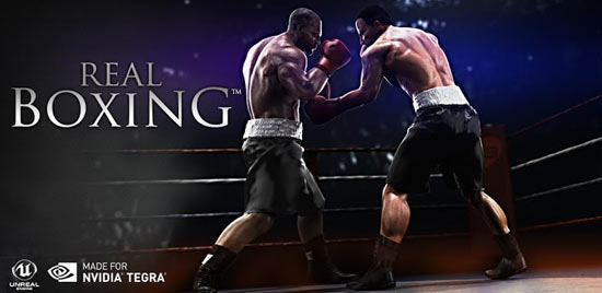 Real-Boxing for pc-myapps4pc